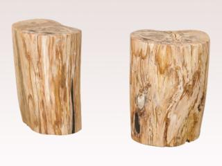 Pair of Petrified Wood Tables