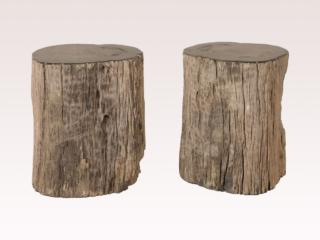 Black Petrified Wood Drink Tables
