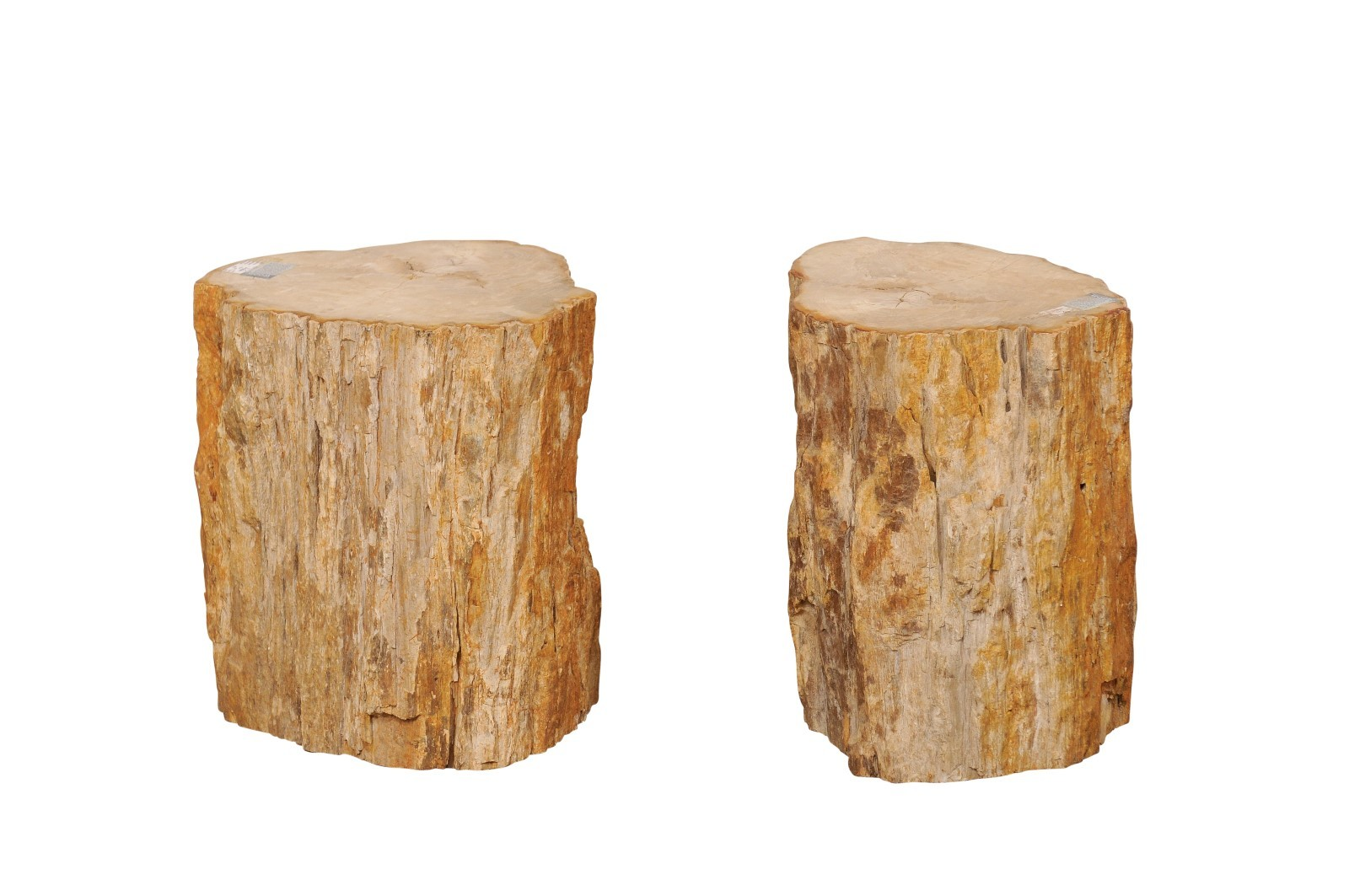 Petrified Wood Small Side Tables