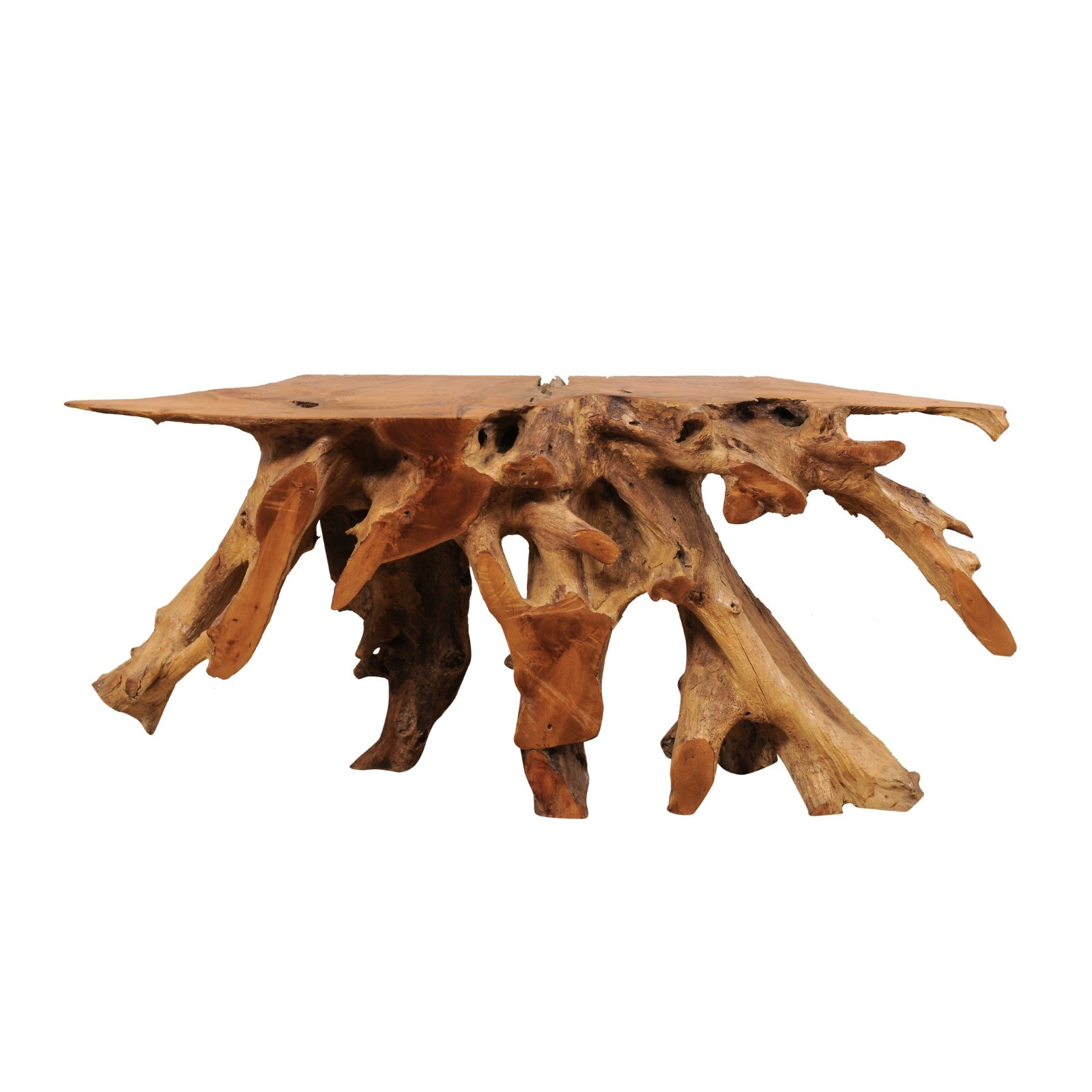 Polished Teak Root Wood Console, 5+ ft