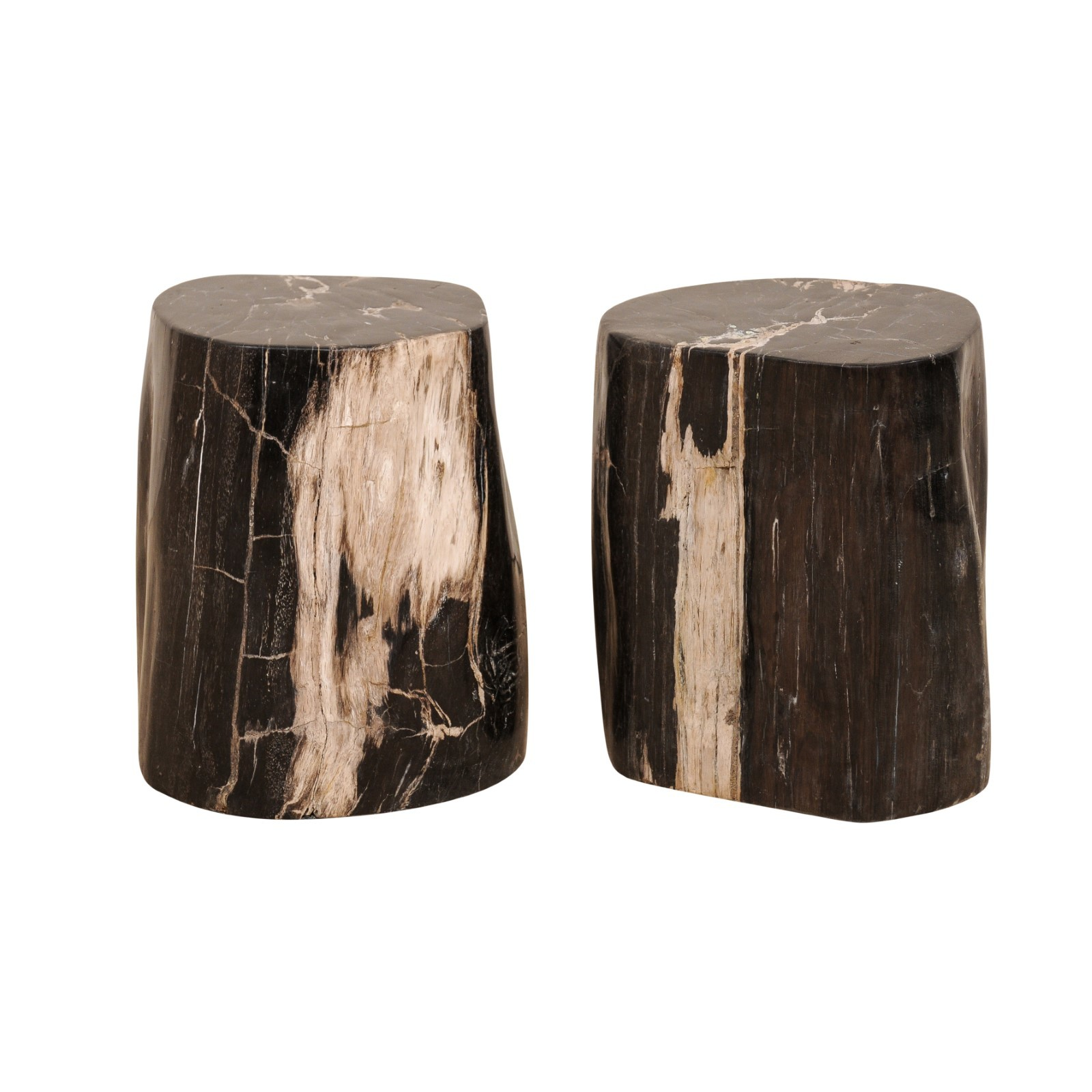 A Pair of Petrified Wood Drinks Tables