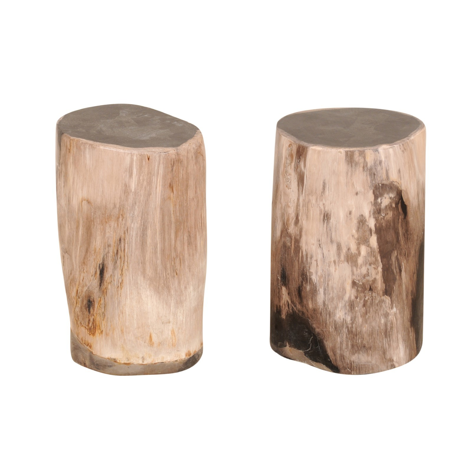 Pair Petrified Wood Pedestal Tables