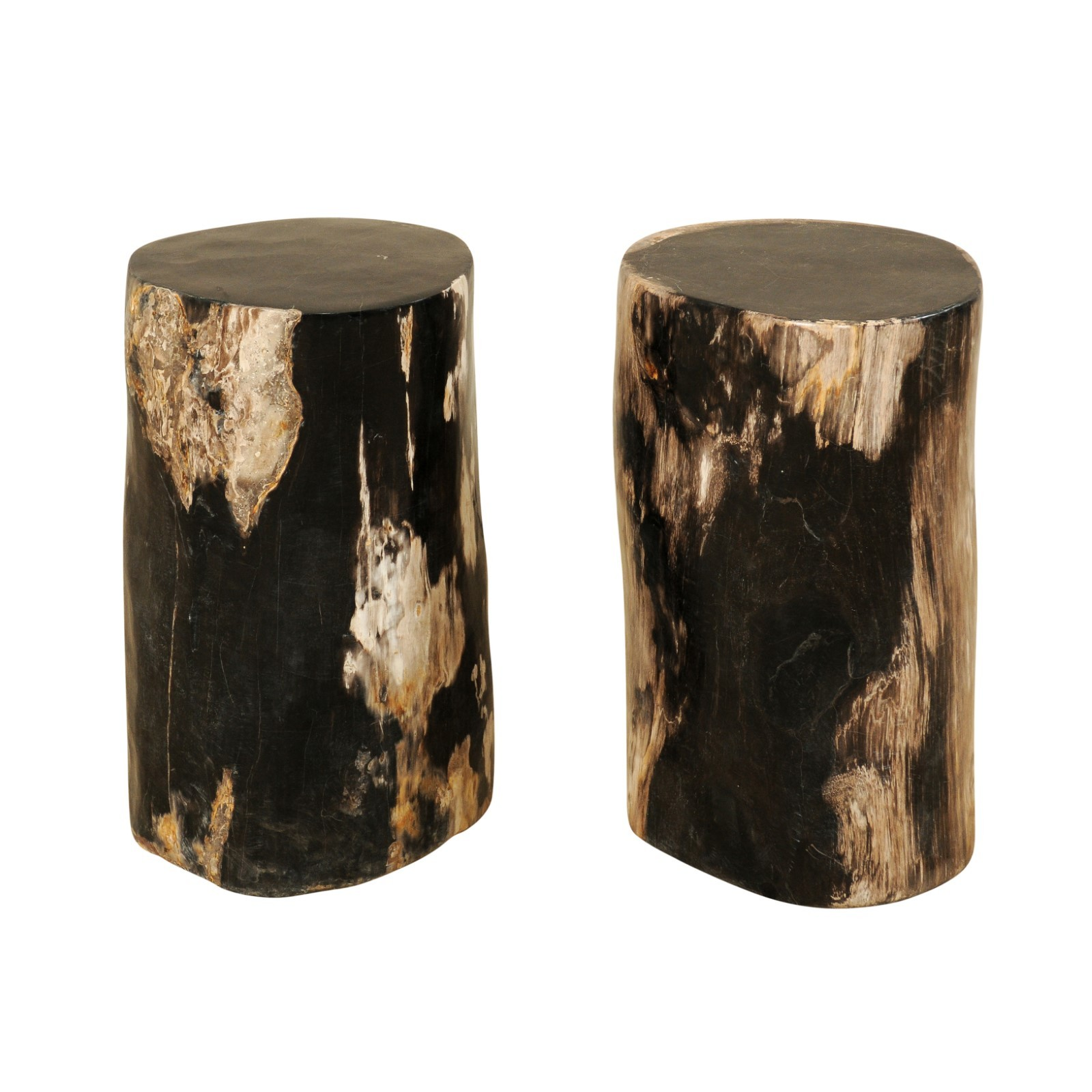 Pair Smaller-Size Petrified Wood Tables