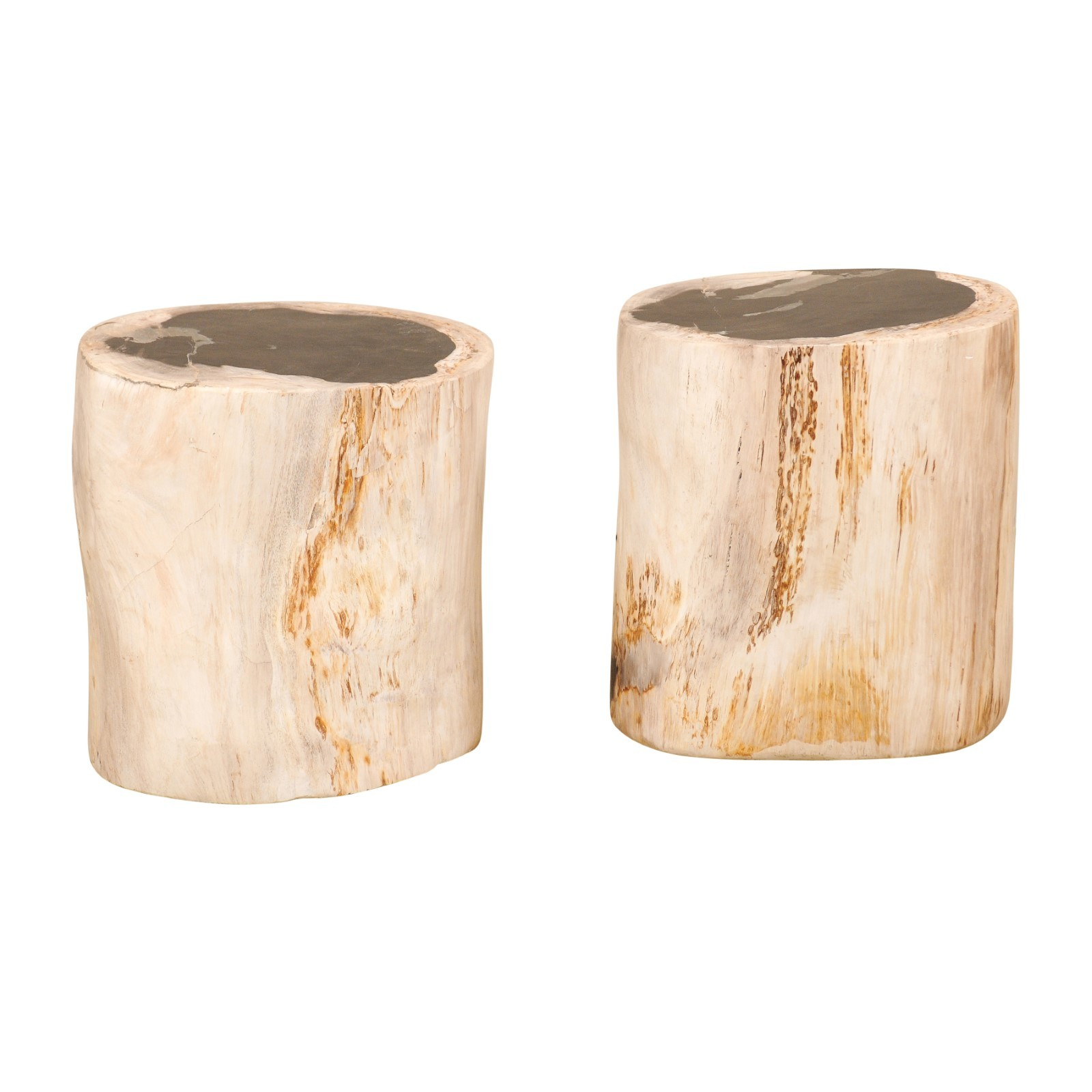 Pair Petrified Wood Drinks Tables