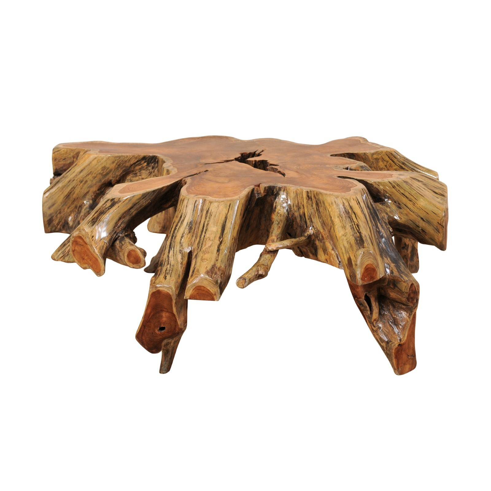 Natural Tree Root Coffee Table