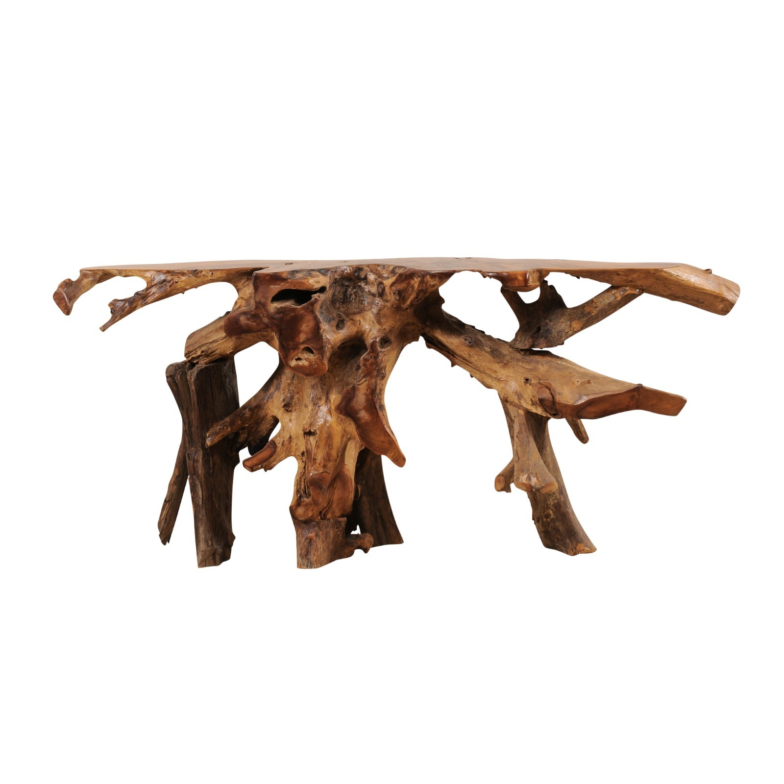 Tree Root Console Table, Teak Wood