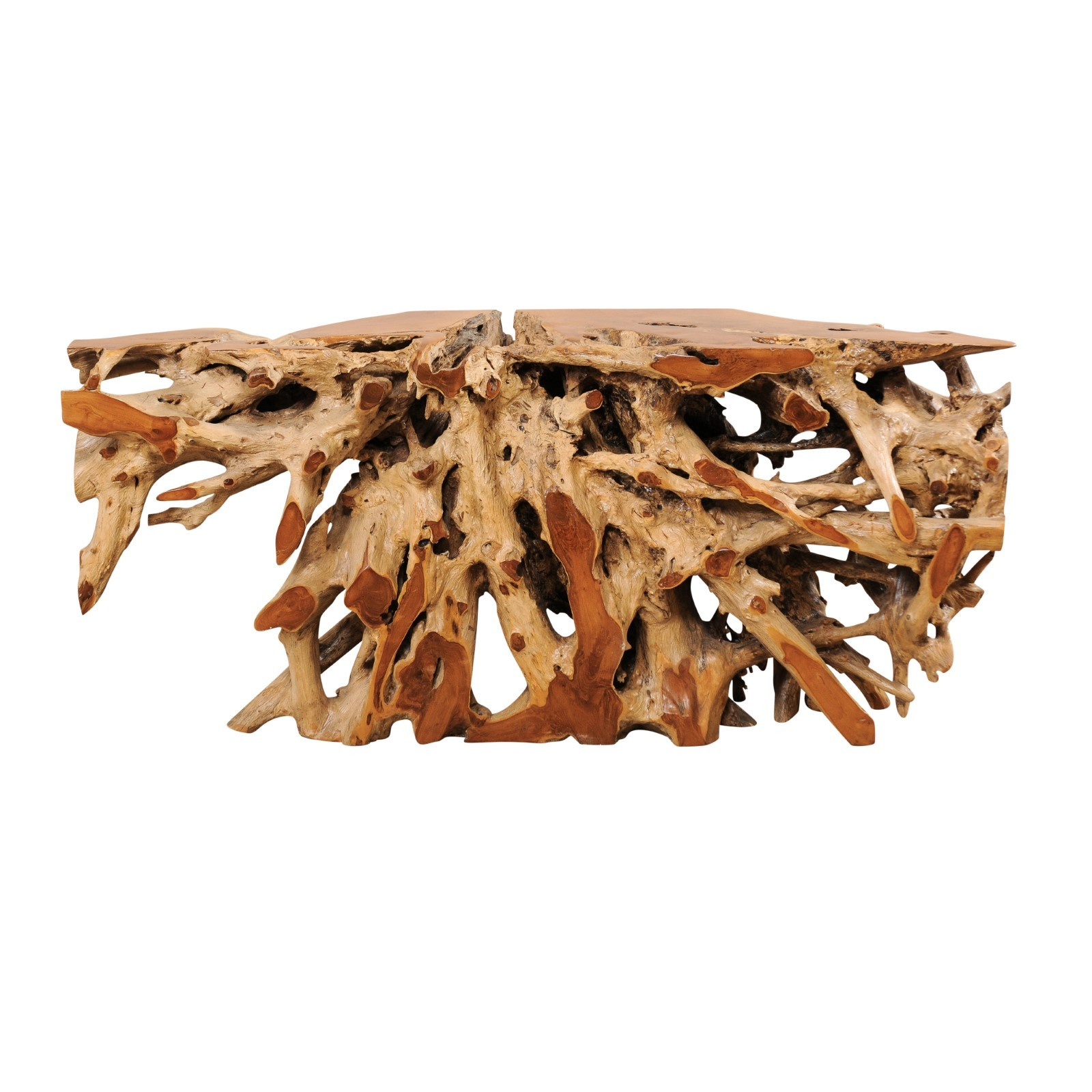 An Exceptional Teak Root Console Table