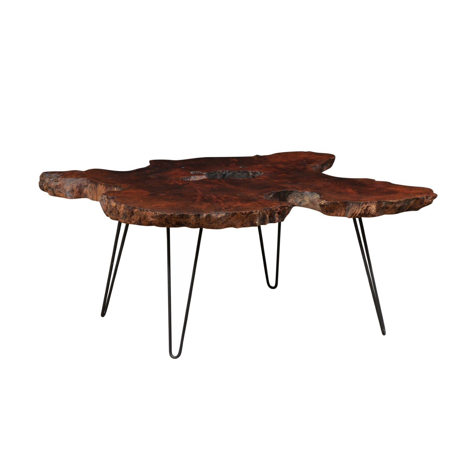 Custom Spanish Root Slab Top Coffee Table